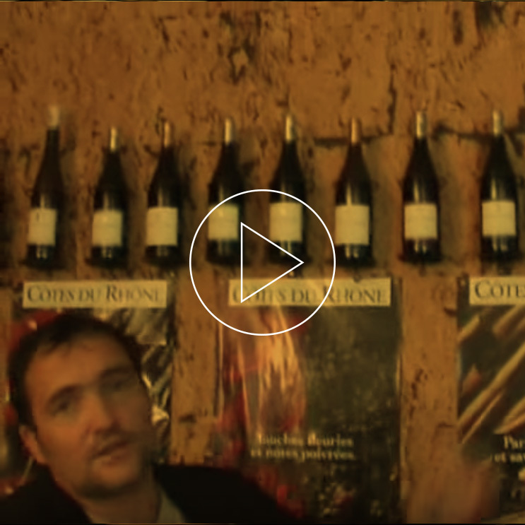 Video Vignette 02 2